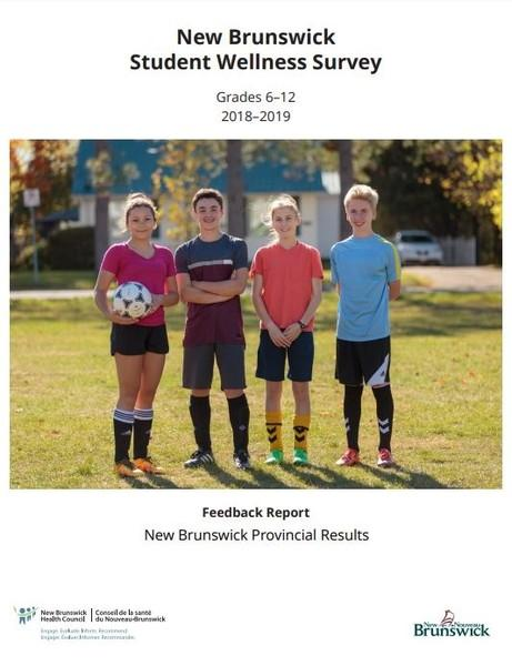 New Brunswick Student Wellness Survey – Grades 6 to 12 - 201 ... Image 1
